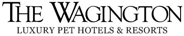 wagington-logo-mobile